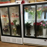 Продаю холодильник / холодильный шкаф-купе для цветов или продуктов, Нижний Новгород