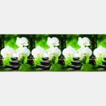 Москва Кухонный фартук «Орхидея с камнями», Нижний Новгород