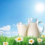 Сухое молоко, Нижний Новгород