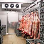 Морозильная камера для мяса -18С, Нижний Новгород
