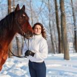 Подарочный сертификат на фотосессию с лошадьми и пони, Нижний Новгород