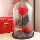 Розы в колбе в нижнем новгороде от производителя, Нижний Новгород