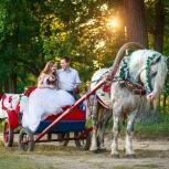 Прогулка в конном экипаже, Нижний Новгород