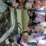 На собачку (унисекс) новый всесезонный комбинезон р.19 спинка 36см, Нижний Новгород