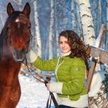 Фотосессии с лошадьми и пони, Нижний Новгород