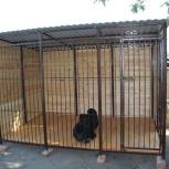 Вольер для животных на заказ, Нижний Новгород